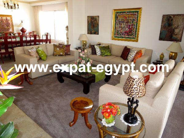 Newly completely renovated penthouse apartment for sale in Dokki, Giza, Egy