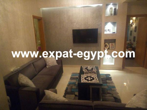 Cozy fully furnished apartment for sale in Down town, Cairo,Egypt
