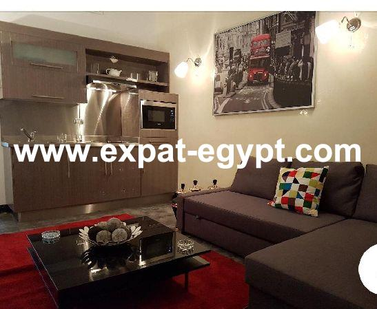 70 m² two bedrooms hotel apartment in zamalek for rent