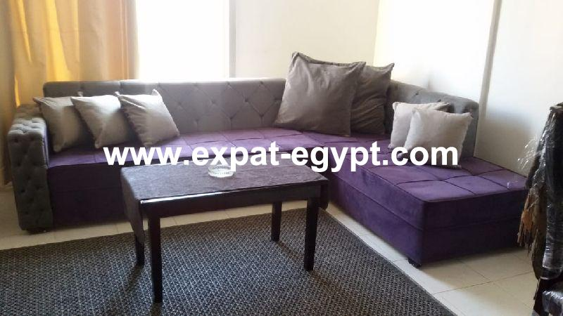 Nice apartment newly furnished in Rehab City, New Cairo, Egypt